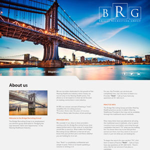 Sample Bridge Group Website Portfolio